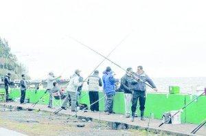 Una gran concurrencia en el torneo de pesca